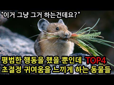 SONY_1626082700tmy.jpg